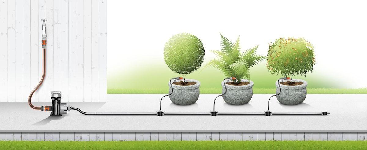 Капельный полив растений